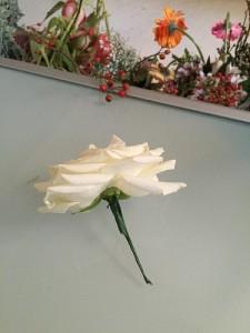 s04-05